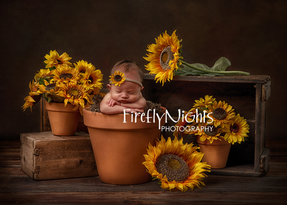 Naperville newborn photographer