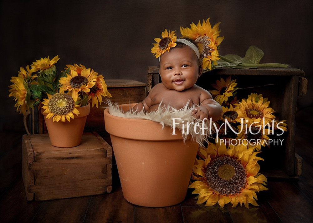 Wheaton baby photographer
