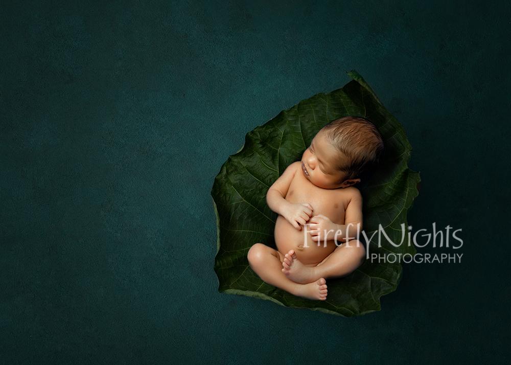 Oak brook newborn photographer