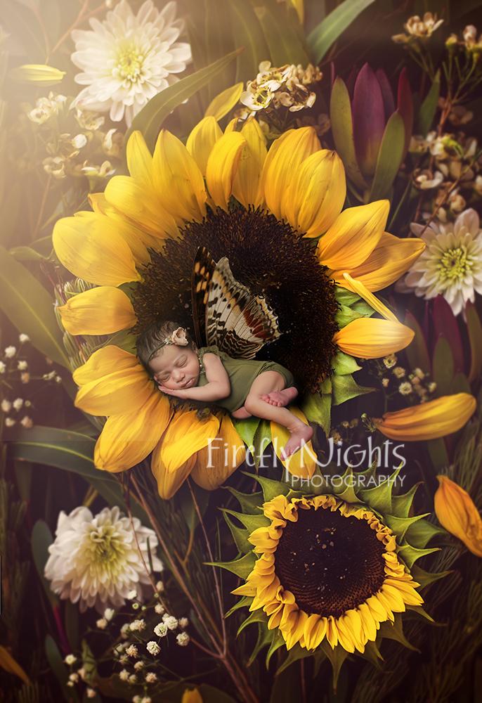 Plainfield newborn photographer